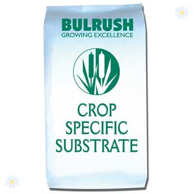 Image of Professional Muklti-Purpose Compost blend - 80L bag